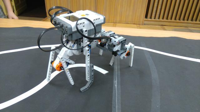 Robot kroczący Huberta